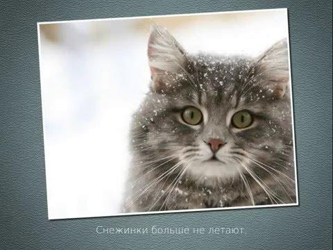 В последний день Зимы