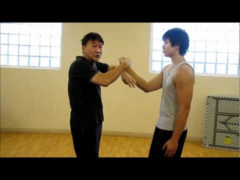 Learn Wing Chun Online at Home | Get Wing Chun Online ...