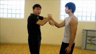 學詠春、學英文 Learn Wing Chun, Learn English Lesson 1-- 詠春基本理論 Some basic Wing Chun theories