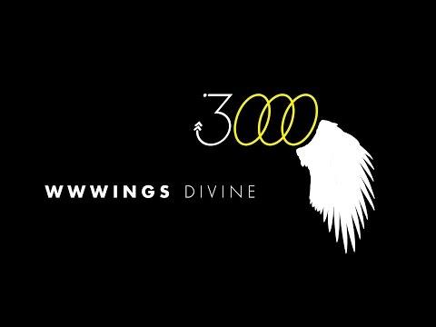 WWWINGS - 3000 (SMBL040)