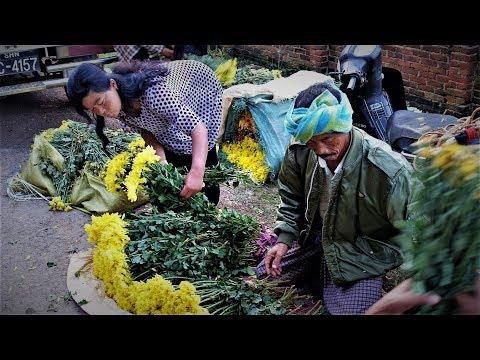 เที่ยวเมืองกะลอ,ประเทศพม่า,EP#1,Kalaw local market,Shan state,Myanmar