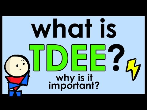 What is TDEE? (Total Daily Energy Expenditure)