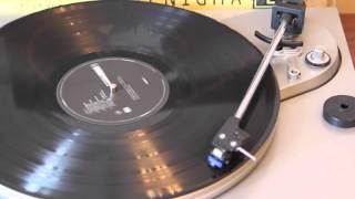 Enigma - The Cross Of Changes (Vinyl LP / Виниловая Пластинка)