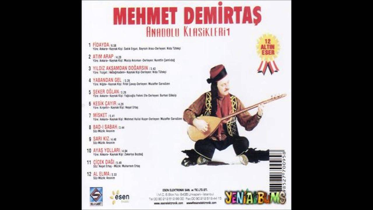 Mehmet Demirtaş-Fidayda