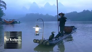 Китай. Рыбалка с бакланом (Китайский бакланчик)   За кадром   Моя Планета
