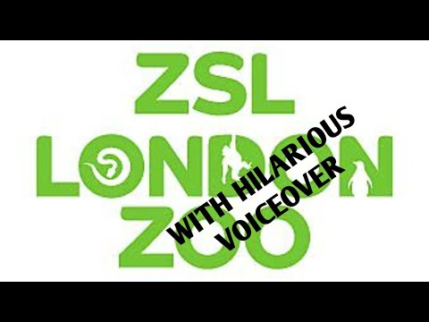 VISIT TO LONDON ZOO WITH HILARIOUS VOICEOVER | ZSL