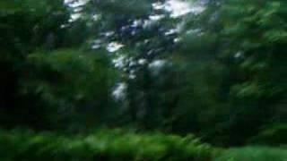 Hendrickson Dance - Hendrickson Mayflies Mating