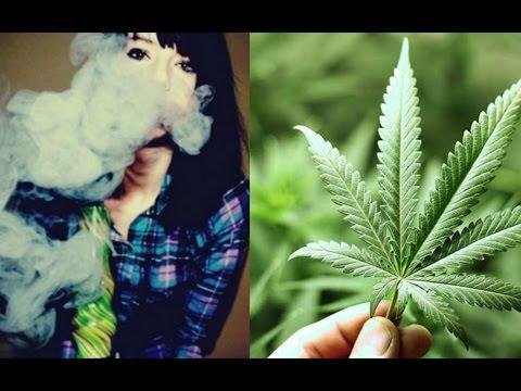 top-10-cosas-que-deberias-saber-sobre-la-marihuana