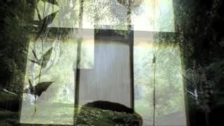 Kate Bush - Prelude / Prologue