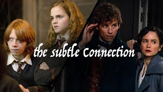 The Subtle Connection between Ron and Hermione & Newt and Tina