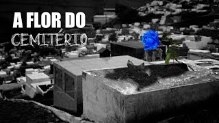 A Flor do Cemitério | Eli Corrêa Oficial |
