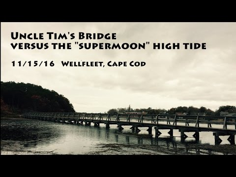 Supermoon high tide vs. Uncle Tim