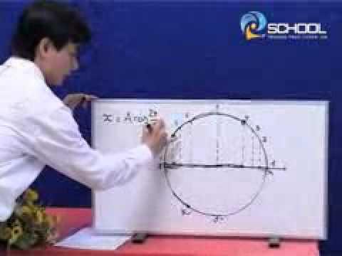 Liên hệ chuyển động tròn đều và dao động điều hoà - Thầy Bùi Thái Học