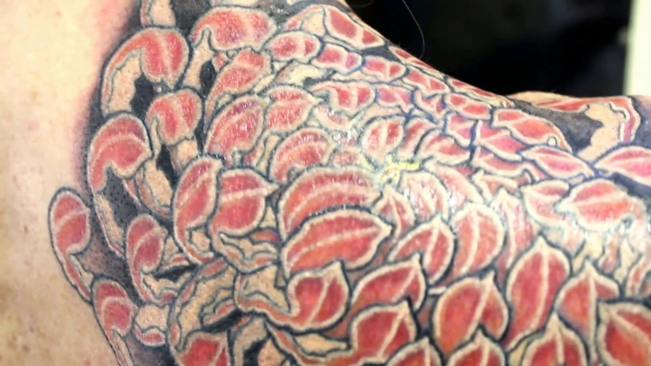 Japanese Tattoochrysanthemum Chavatattoo японская татуировкахризантема