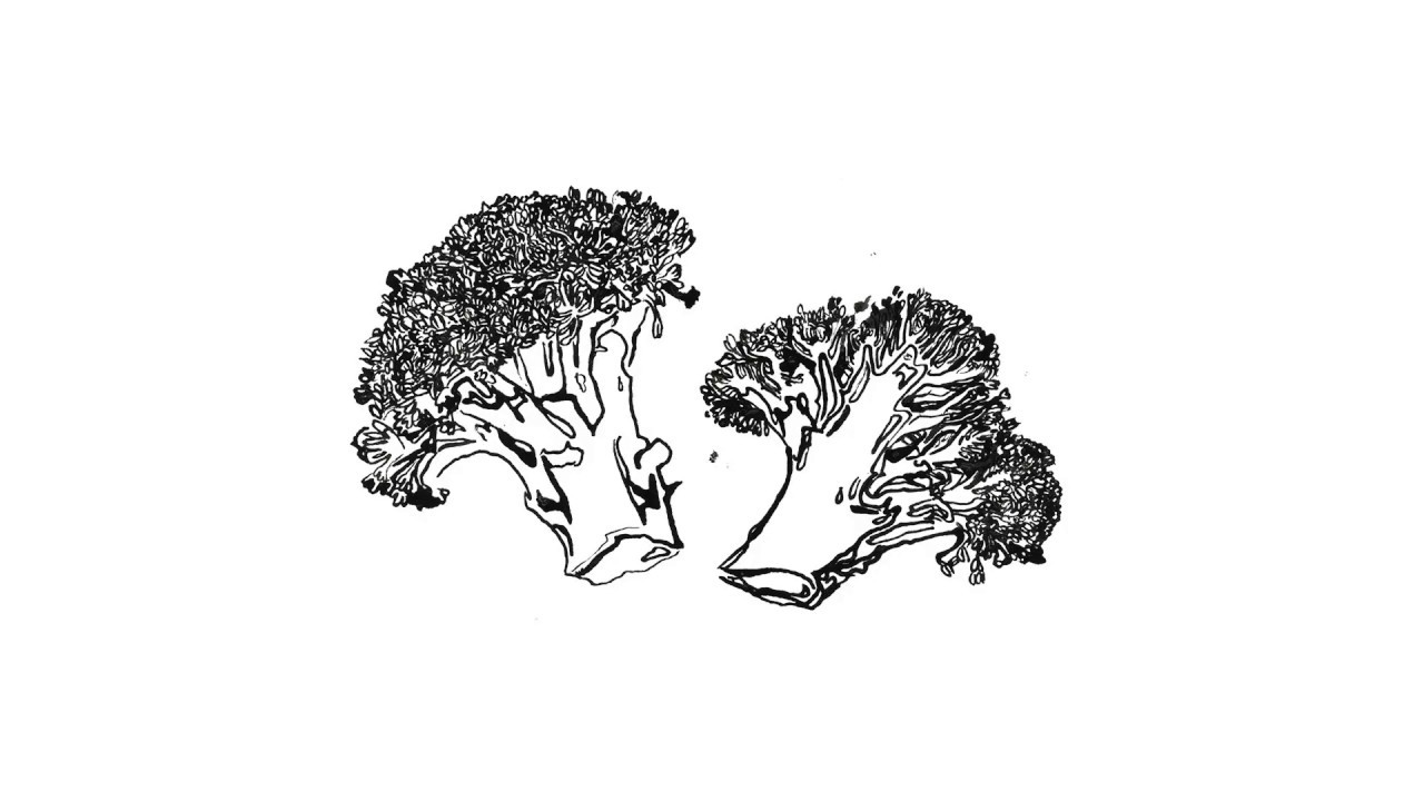 Download Broccoli ink illustration (almost step-by-step)