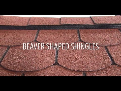 Installing Beaver Shaped Roof Shingles