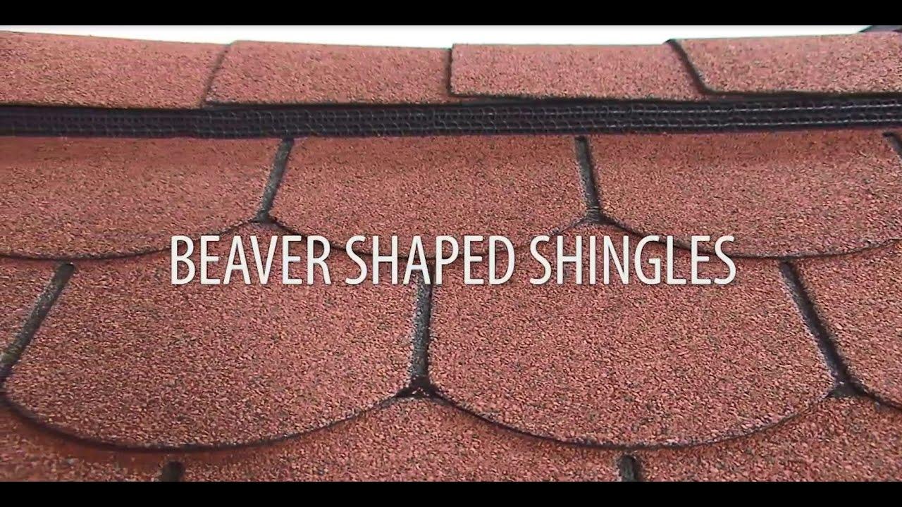 Installing Beaver Shaped Roof Shingles