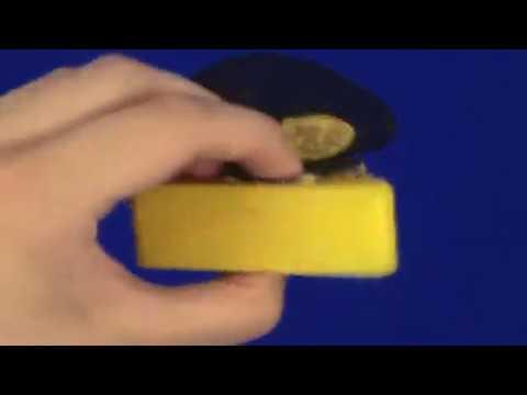 Sesame Street Live - The Big Cheese (Test Video)