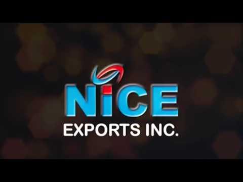 NICE EXPORTS INC
