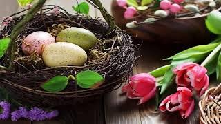 Поздравление с Пасхой.  Видеопоздравление с праздником Святой Пасхи