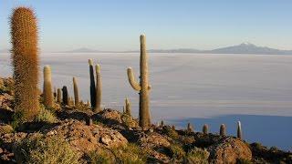 BOLIVIE nord du CHILI, un voyage pas comme les autres...