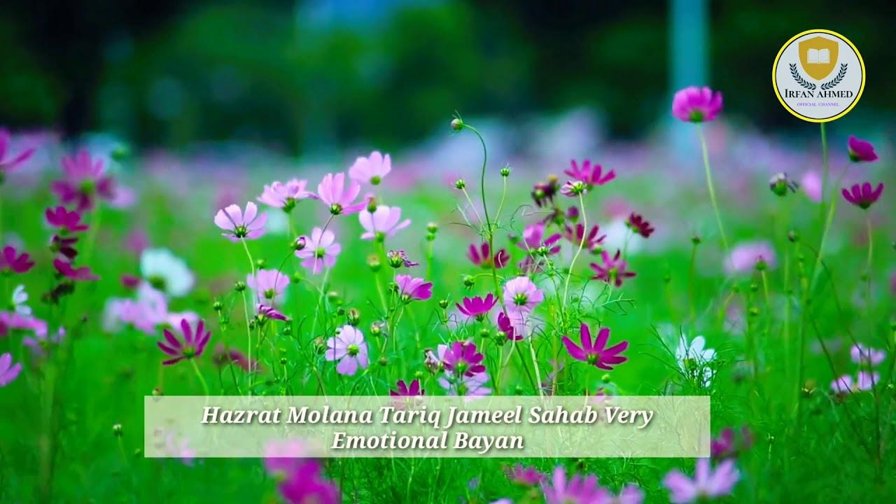 Hazrat Maulana Tariq Jameel Sahab nice video Irshad Khan official channel
