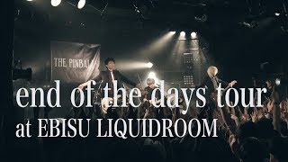 THE PINBALLS LIVE DVD『end of the days tour at EBISU LIQUIDROOM』trailer