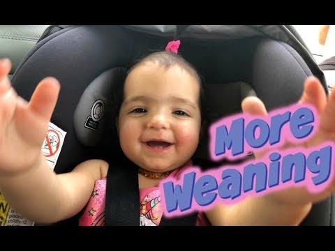 Gradual Weaning | Breastfeeding Advice | Maddi and Me Family Vlog