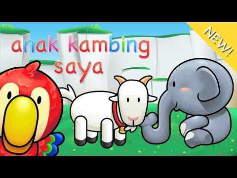 Lagu Anak Indonesia | Anak Kambing Saya