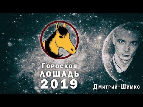 Гороскоп Лошадь -2019. Астротиполог, Нумеролог - Дмитрий Шимко