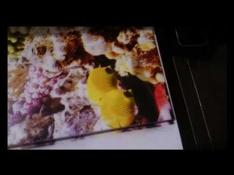 Печать керамической фото плитки на самодельном планшетном принтере принтере