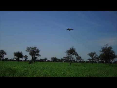 South Sudan Air Drop In Action