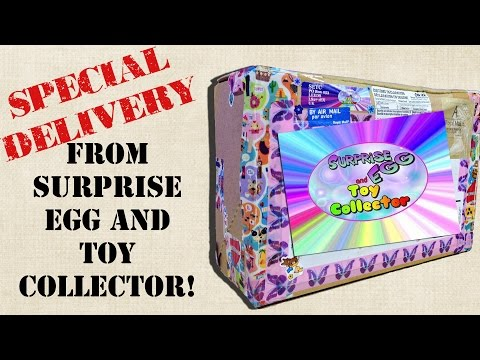 Special Delivery from Surprise Egg and Toy Collector! My Little Pony, Wikkeez, Shopkins! from YouTube · Duration:  21 minutes 10 seconds