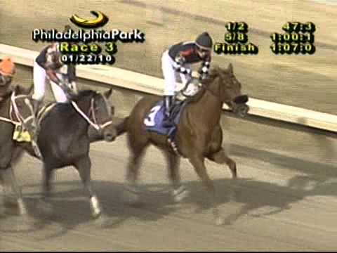 No Exaggeration wins @ Philadelphia Park on January 22, 2010 for Dare To Dream Stable