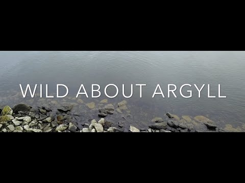 Bikepacking - Wild About Argyll