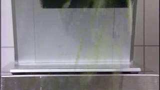 Нарезка цукини соломкой - Овощерезка Hallde RG-350
