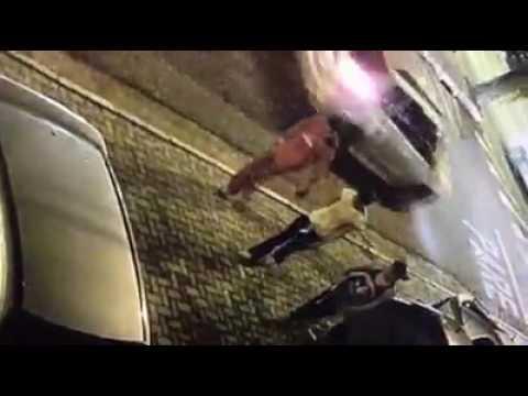 Resultado de imagem para Home Notícias Região DIG apura envolvimento de duas mulheres com crime da São João