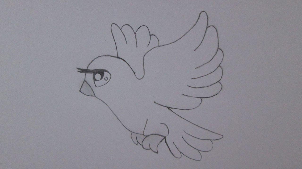 C mo dibujar una paloma youtube - Papel para dibujar ...