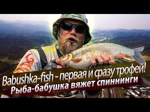ТРОФЕЙНАЯ рыба-бабушка. Рыбалка в верховьях городской реки. 2020/03