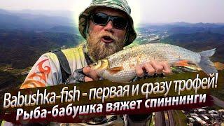 ТРОФЕЙНАЯ рыба бабушка Рыбалка в верховьях городской реки 2020 03