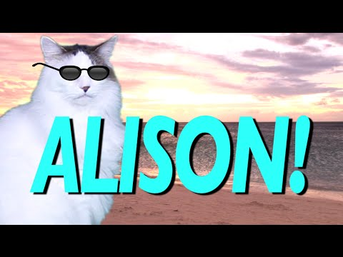 HAPPY BIRTHDAY ALISON!  EPIC CAT Happy Birthday Song