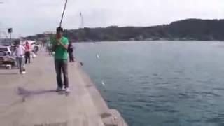 istanbul istavrit avı dersi, usta balıkçı