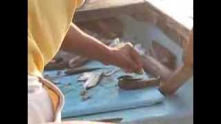Рыбалка на Гоа   Словили змею(20-дневное путешествие по Центральной Индии. Незабываемые впечатления! Мы посетили Дели, Агру (Тадж махал),..., 2014-03-03T19:07:20.000Z)