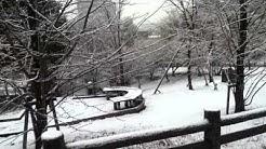 Snow in handai