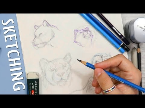 drawing-big-cats-without-reference