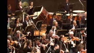 Shostakovich - Symphony No. 10 in E minor, Op  93, pt.1