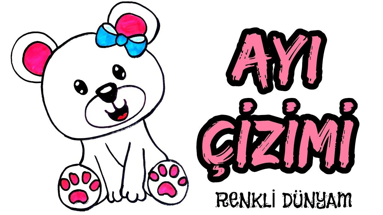 Ayi Nasil Cizilir Ayi Cizimi How To Draw A Bear Renkli Dunyam