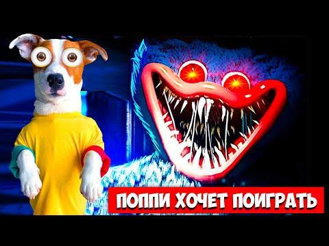 Видео: Poppy Playtime Chapter 1 ► Прохождение игры (Глава 1) + концовка