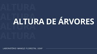 ALTURA DE ÁRVORES