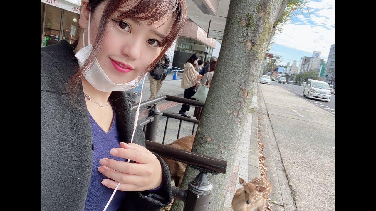 일본)나라현 여행! 사슴까지 저를 따라오는데요